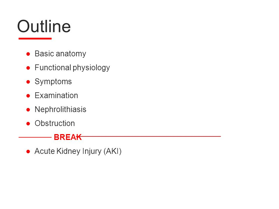 anatomy and physiology outline