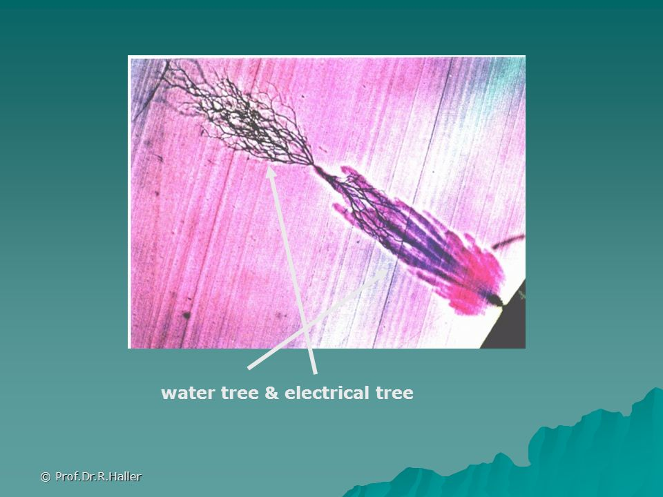 water tree & electrical tree
