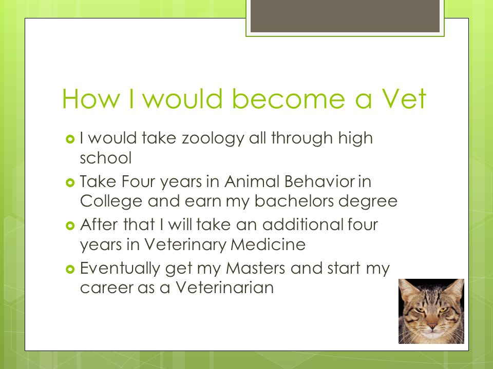 My Career as a Vet By, Abigale Brown. - ppt download