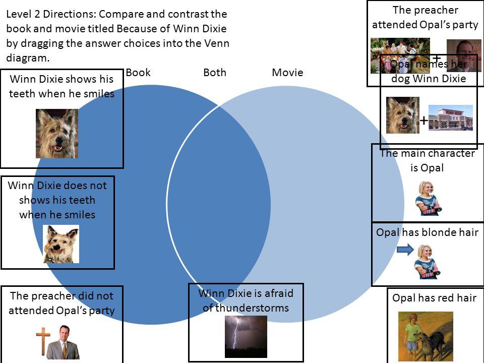 compare contrast book to movie