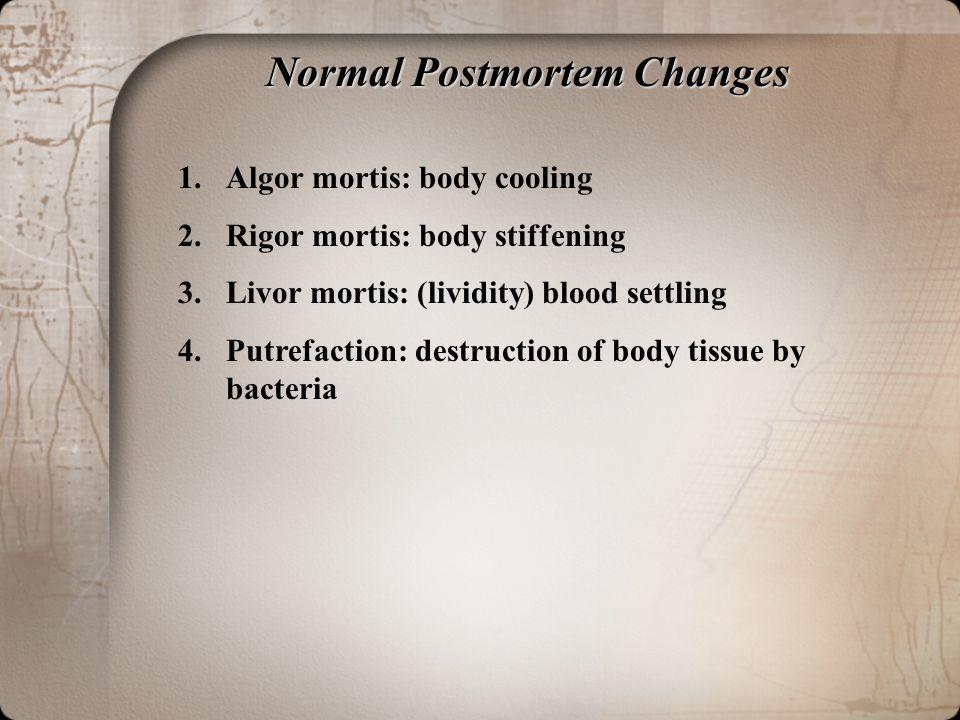 Forensic Pathology - postmortem - 76.1KB