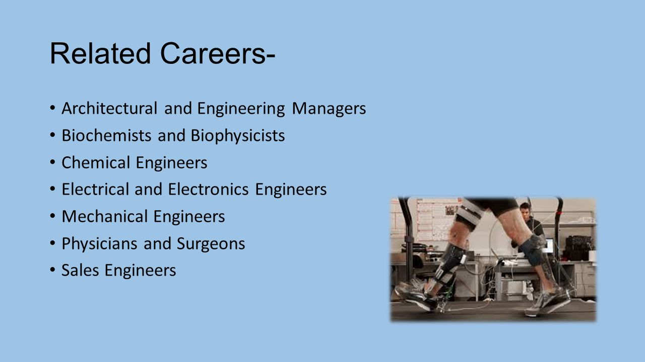 Careers related to anatomy