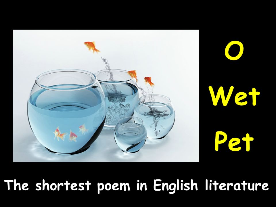 O Wet Pet The shortest poem in English literature