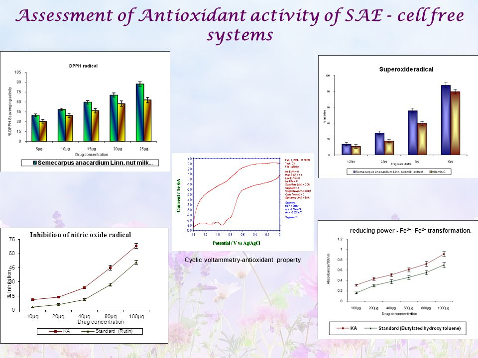 Assessment of Antioxidant activity of SAE - cell free systems