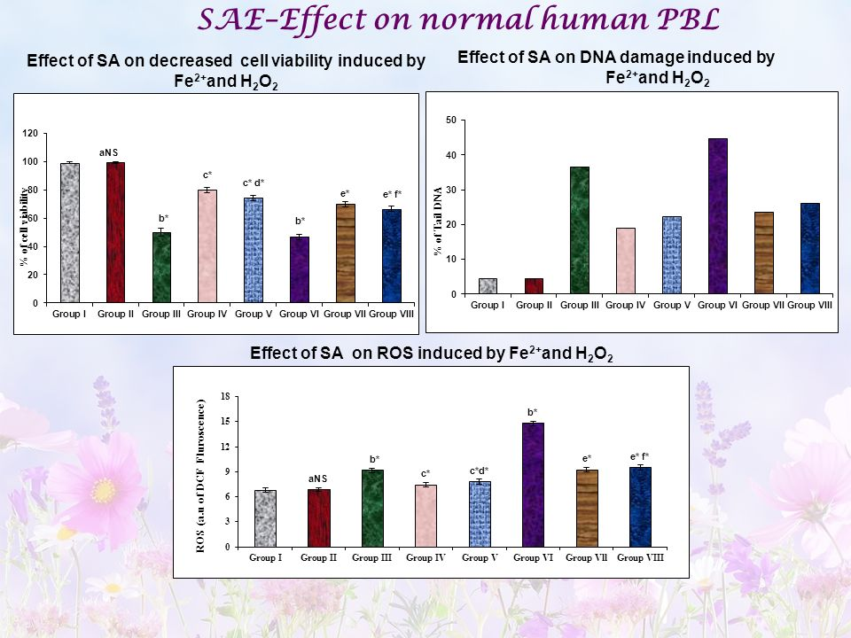 SAE–Effect on normal human PBL