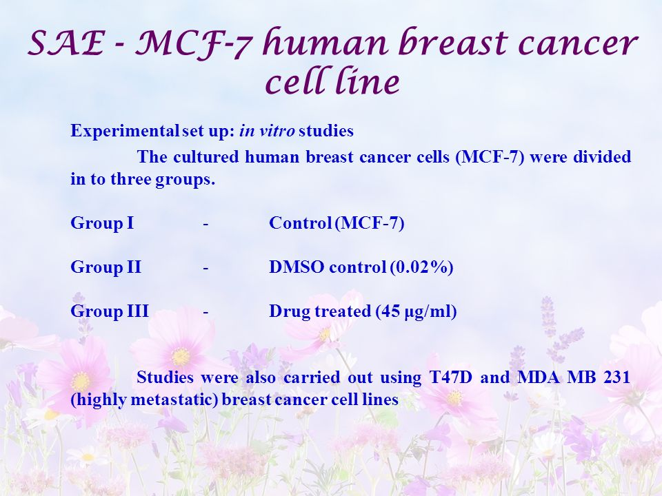 SAE - MCF-7 human breast cancer cell line