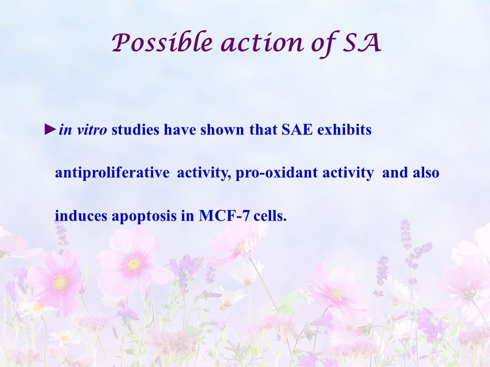 Possible action of SA in vitro studies have shown that SAE exhibits