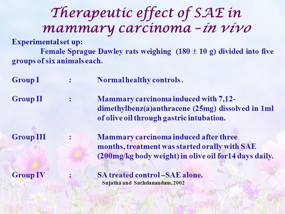Therapeutic effect of SAE in mammary carcinoma –in vivo
