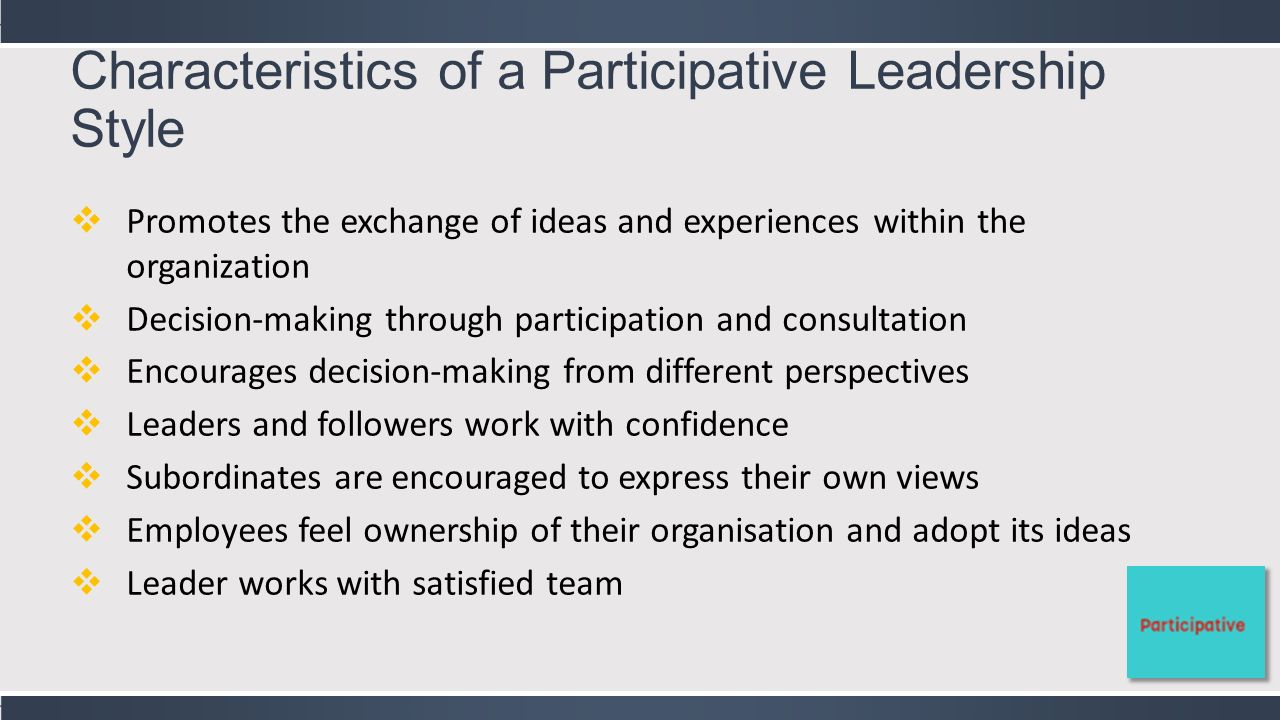 Leadership & Governance - ppt video online download