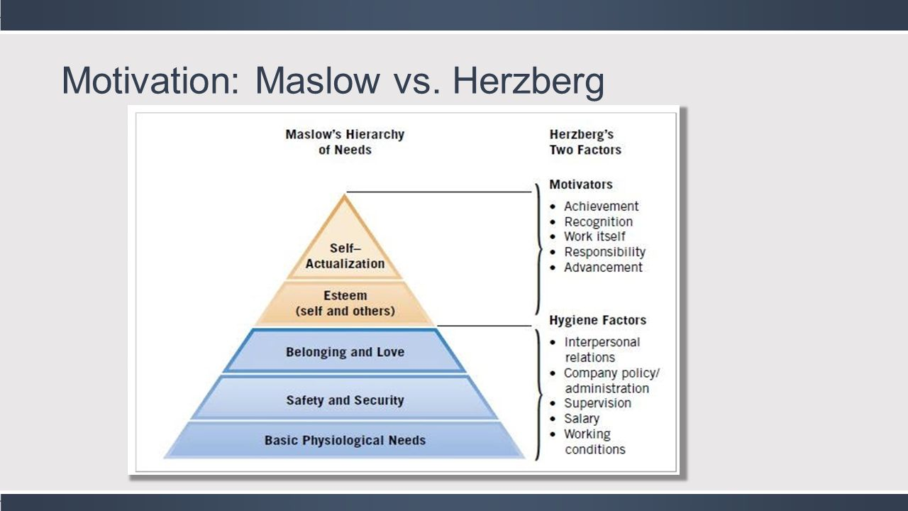 maslow theory and herzberg theory A managerial point of view on the relationship between of maslow's hierarchy of needs and herzberg's dual factor theory  maslow's hierarchy of needs.