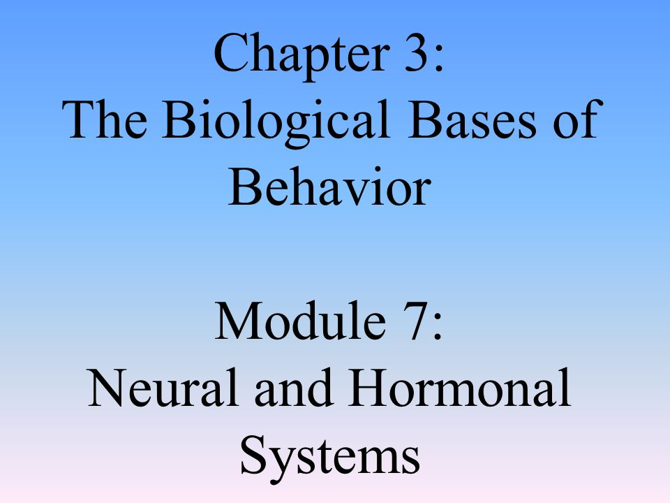 chapter 3 outline the biological bases of Chapter 2 outline i introduction: neuroscience and behavior biological psychology (also called biopsychology or psychobiology ) is the scientific study of the biological bases of behavior and mental processes biological psychology makes important contributions to.