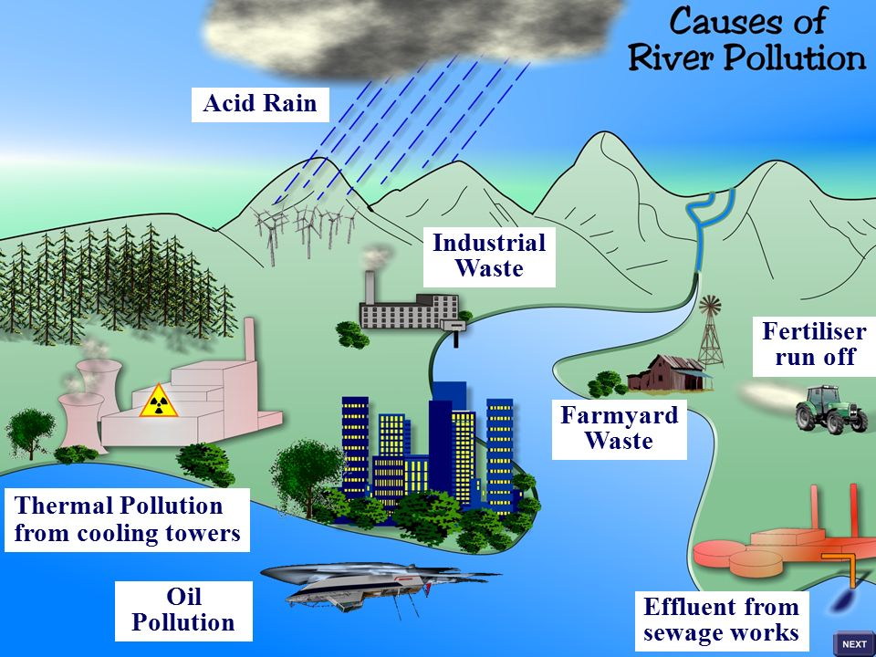 12 Main Causes of Water Pollution