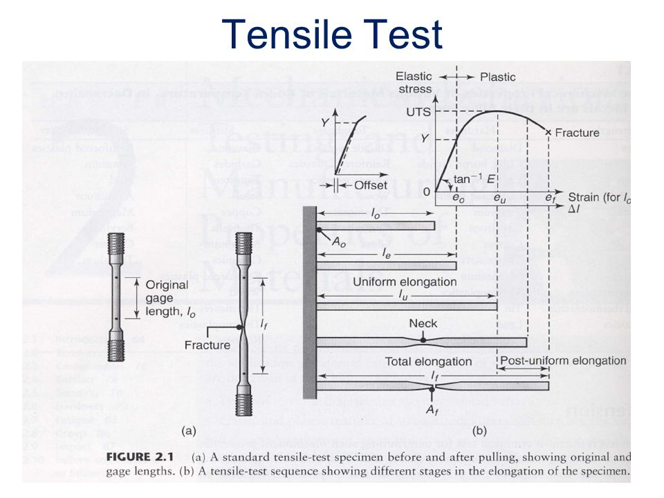 Tension and Compression Testing