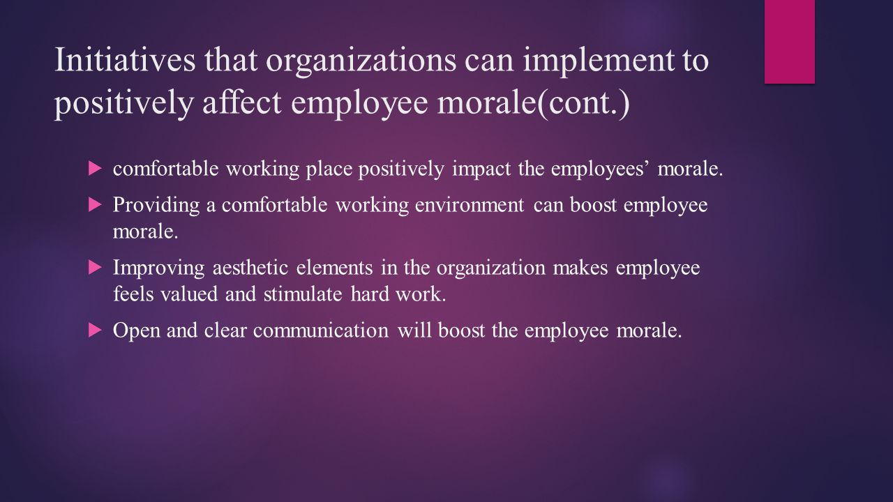 Initiatives that organizations can implement to positively affect employee morale(cont.)
