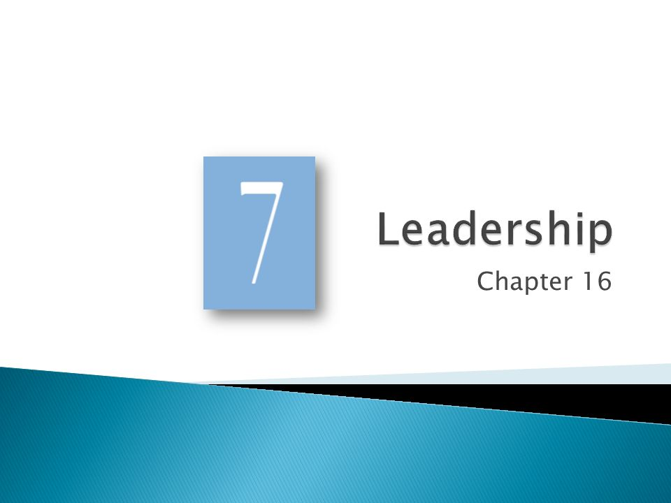 Leadership Chapter 16