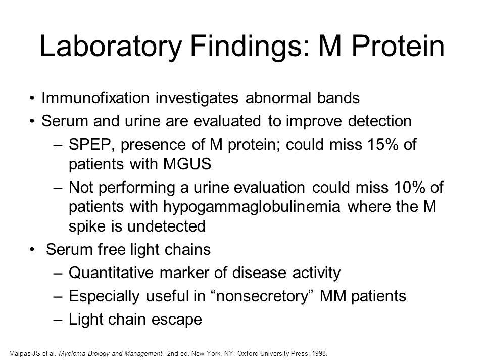 Updates In Nursing Management Of Multiple Myeloma Ppt