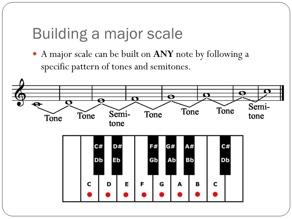 how to build a music following