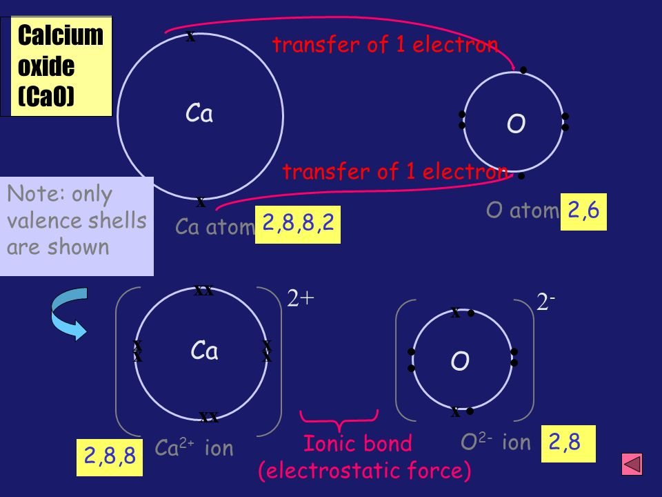 Dot and cross diagram ppt video online download 6 calcium ccuart Images