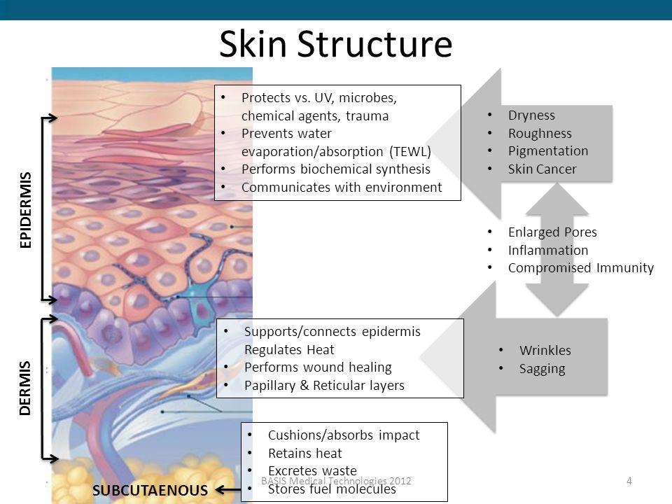 basis skin care training ppt video online download