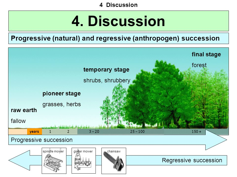4 Discussion 4. Discussion. Progressive (natural) and regressive (anthropogen) succession. final stage.