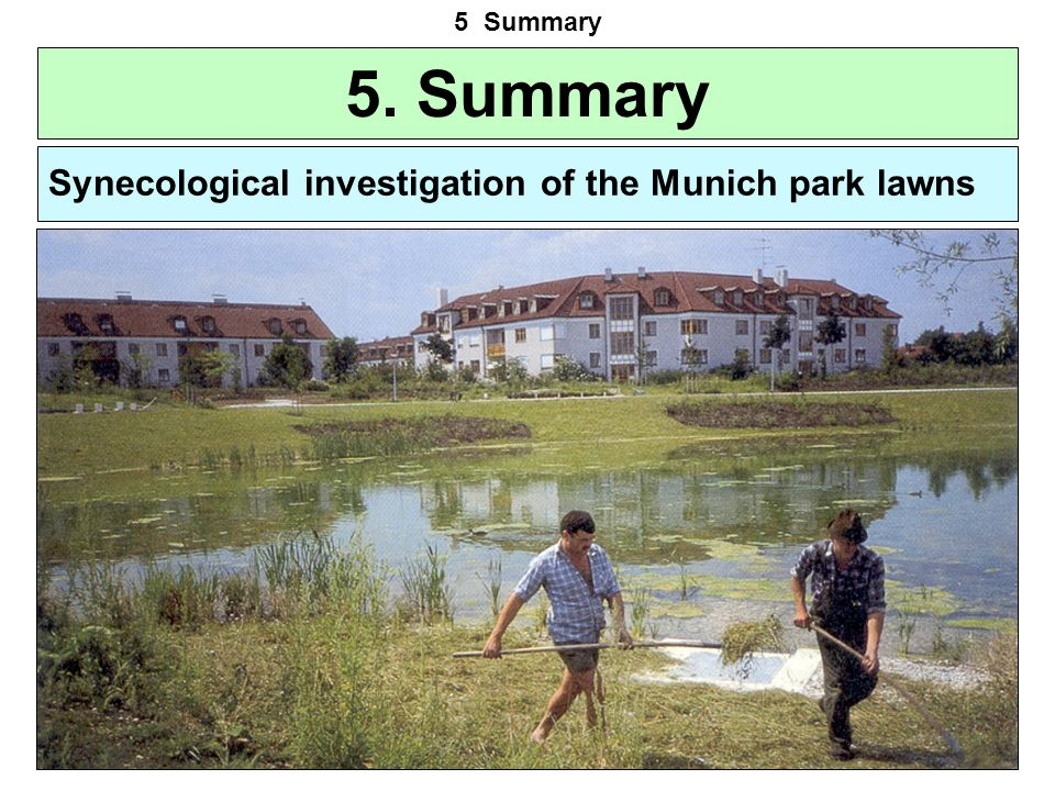 5. Summary Synecological investigation of the Munich park lawns