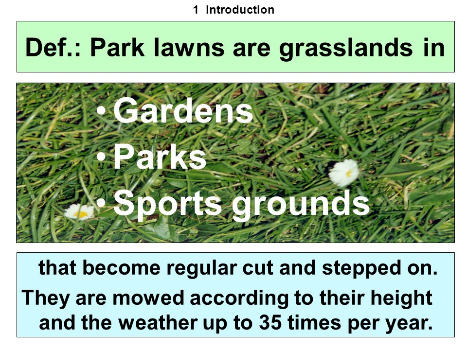 Def.: Park lawns are grasslands in