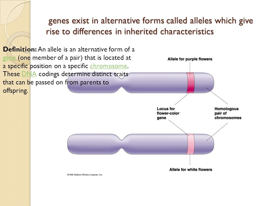 Edexcel Core Biology Topic 1 Unit B1: Influences on life - ppt ...