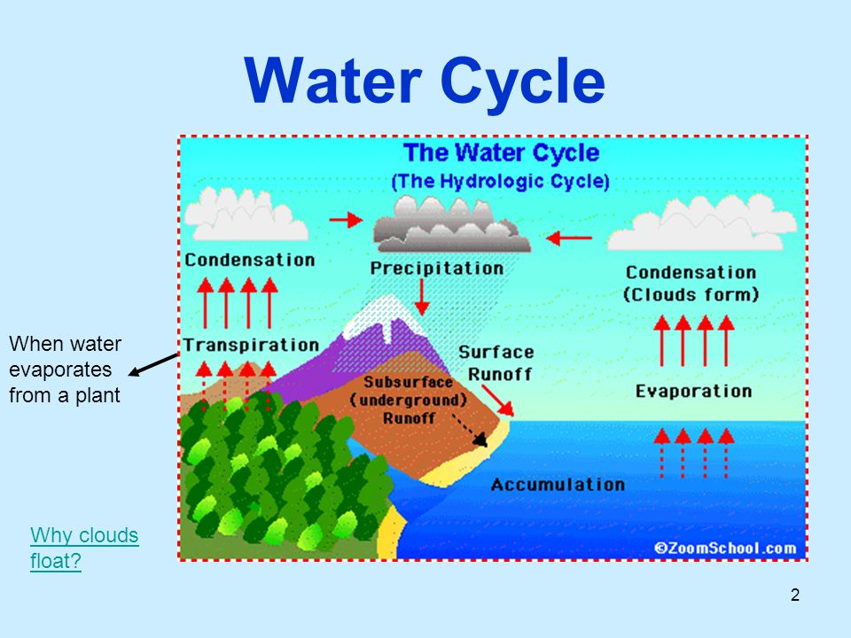 Unit 4 Lesson 3 Water on Earth S8.D ppt download