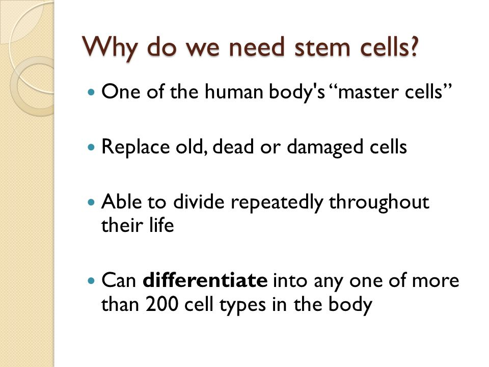 why we need stem cell research essay Topics ideas and thesis statement for stem cell research paper stem cell research is need no doubt, thesis of stem cell research paper topics, rather we.