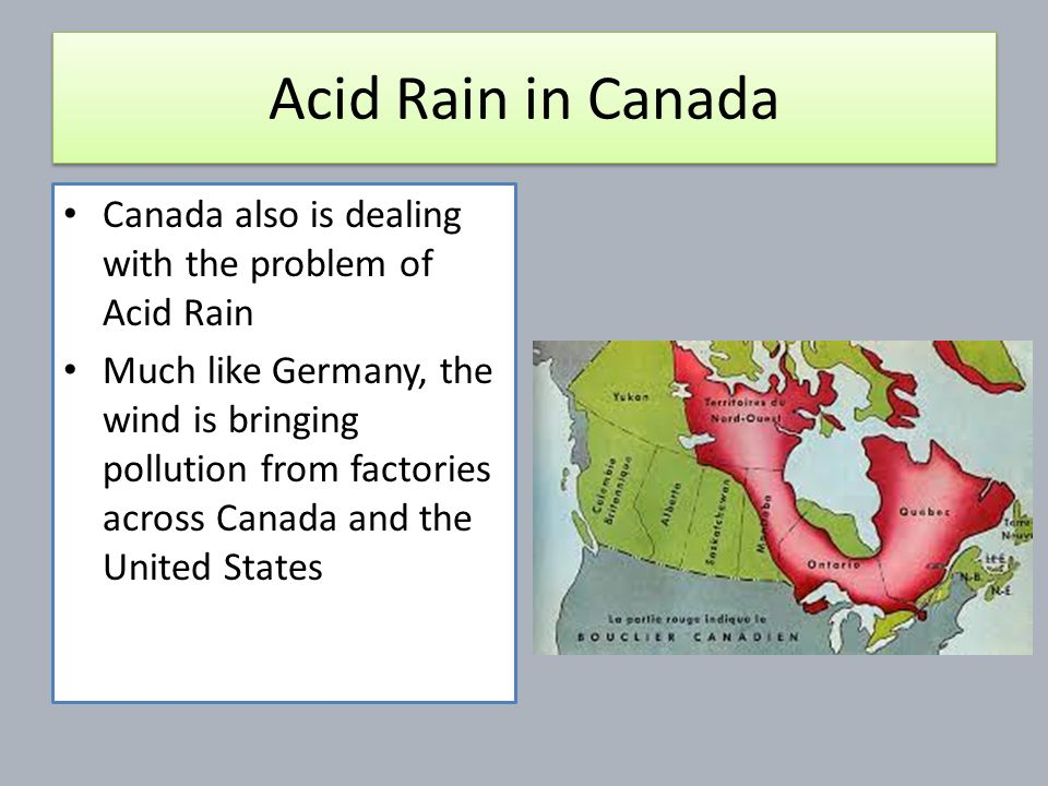 The problem of acid rain and its disastrous effects in canada