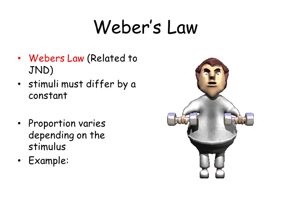 webers law on visual perception 732 visual performance and webers law 246:  outdoor lighting: physics, vision and perception  outdoor lighting: physics, vision and perception.