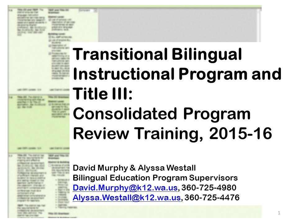 Transitional bilingual instructional program and title iii transitional bilingual instructional program and title iii consolidated program review training 2015 16 toneelgroepblik Gallery
