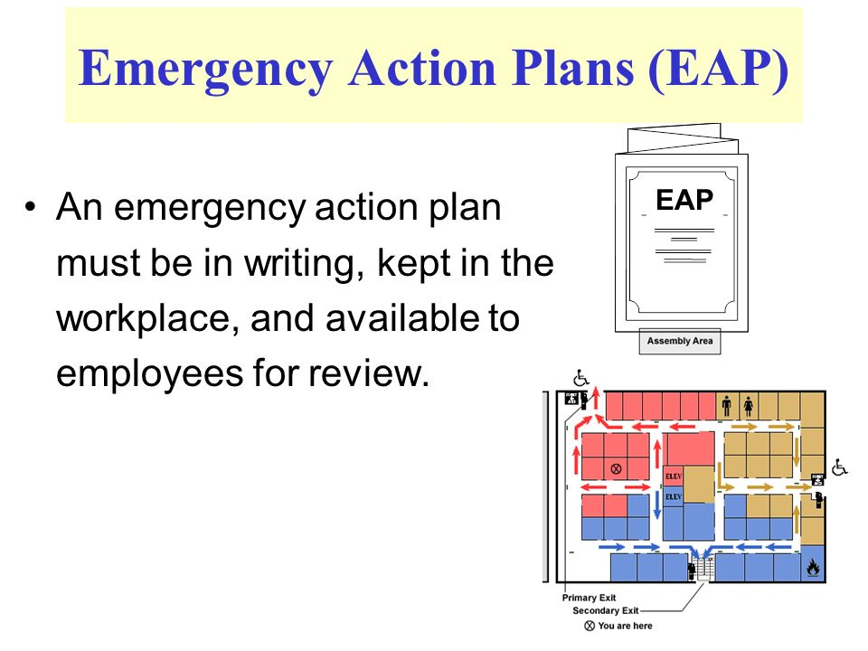 Writing a emergency action plan