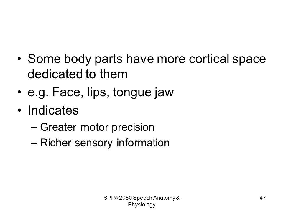 Wunderbar Anatomy And Physiology Information Zeitgenössisch ...