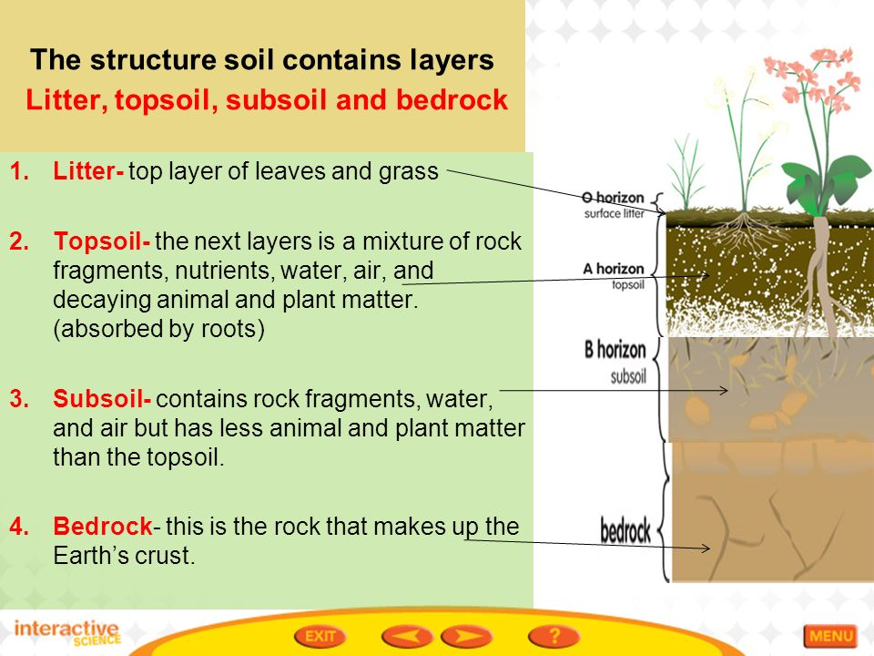 Ch 8 1 conserving land and soil ppt video online download for Earth soil layers