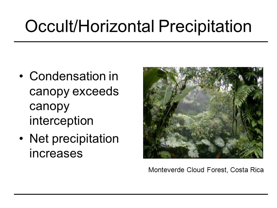 21 Occult/Horizontal Precipitation Condensation in canopy exceeds canopy interception ...  sc 1 st  SlidePlayer & What Happens to Precipitation? - ppt video online download