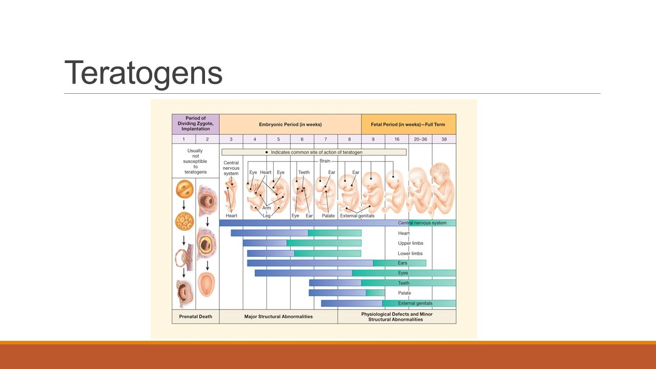 teratogens and prevention Alcohol is a known teratogen, or teratogenic agent these terms are applied to any agent that is known to interfere with normal embryonic prevention: the most.