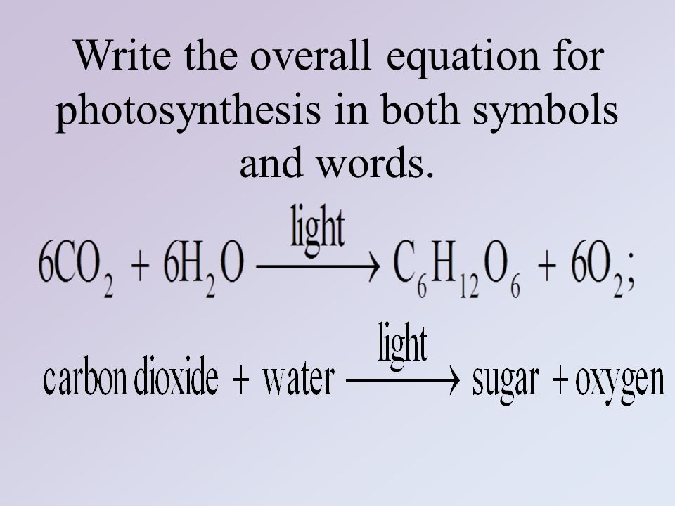 write the overall equation for photosynthesis using words What is a word equation for photosynthesis a: write the overall equation for photosynthesis using words chemical equation for photosynthesis.