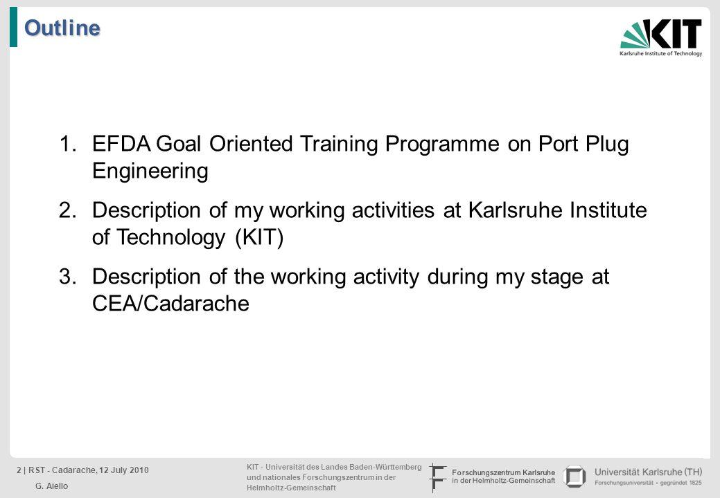 EFDA Goal Oriented Training Programme on Port Plug Engineering