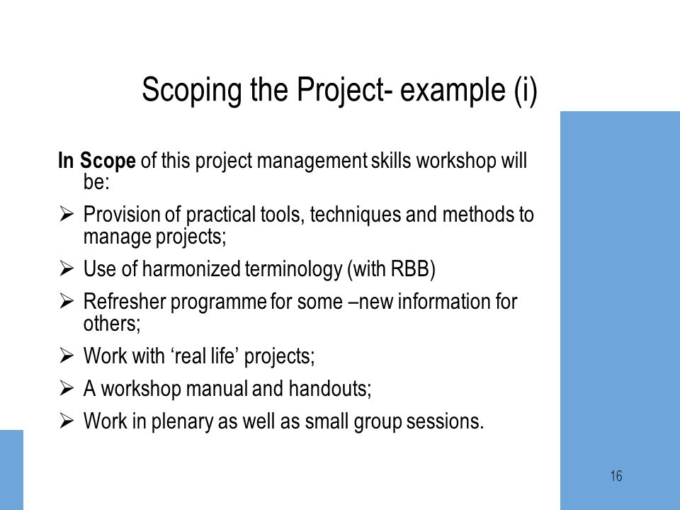 Scoping the Project- example (i)
