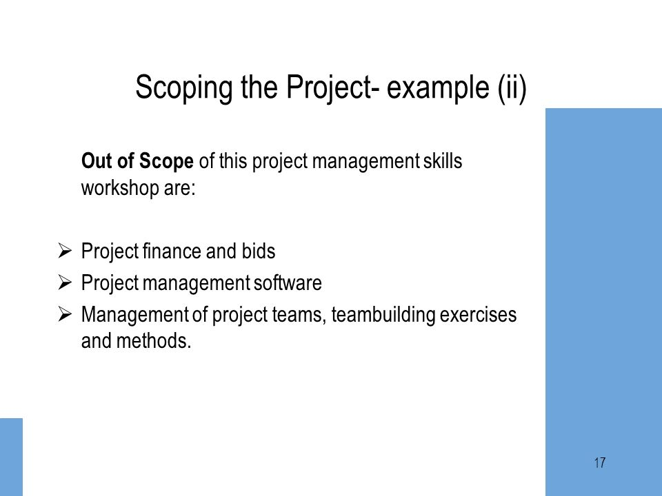 Scoping the Project- example (ii)