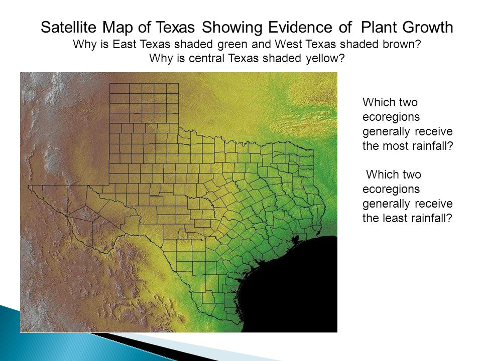 A Amarillo B Austin C Corpus Christi D Houston E Galveston F - Satellite map of texas