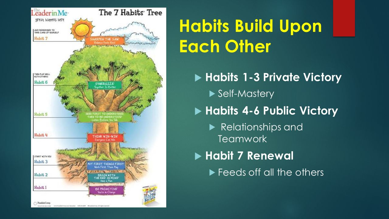 habit 4 of the 7 habits In these modules you'll learn the 7 habits of highly missional leaders and how they apply to your context you'll learn how to unleash the 7 habits of highly missional leaders into your life and leadership, as well as understand and solidify the foundations of missional leadership in your life.