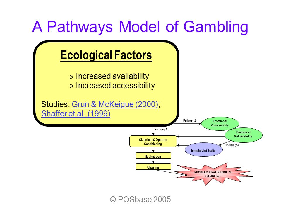 Problem gambling vulnerability