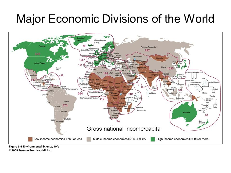What Are the Major Divisions of Economics?