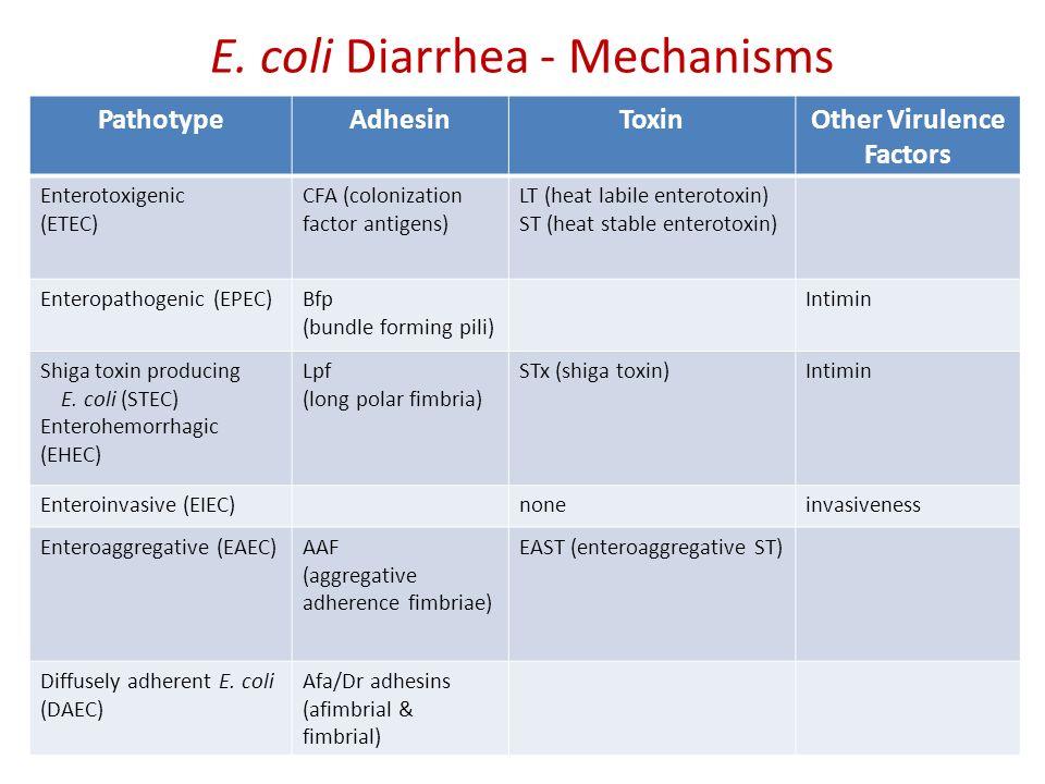 Pathogenic Gram Negative Bacteria Baldwin Toye MD FRCPC
