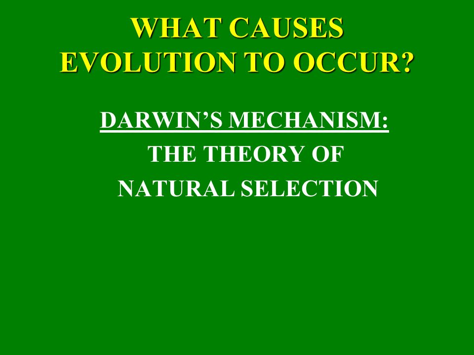 a definition of the theory of evolution by natural selection The theory of evolution by natural selection explains how species evolve, or change through time — sometimes changing so much that new species are created the variety you see in the living things all around you is a result of each organism's unique genes the theory of evolution by natural.