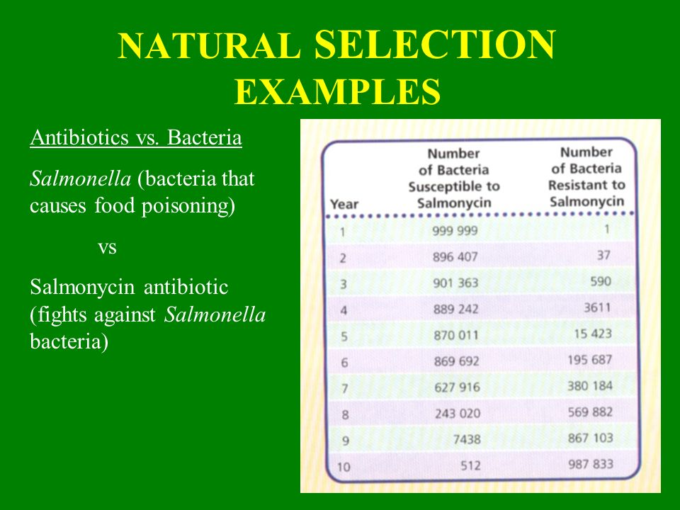 What Is A Group Of Natural Populations That Can Interbreed