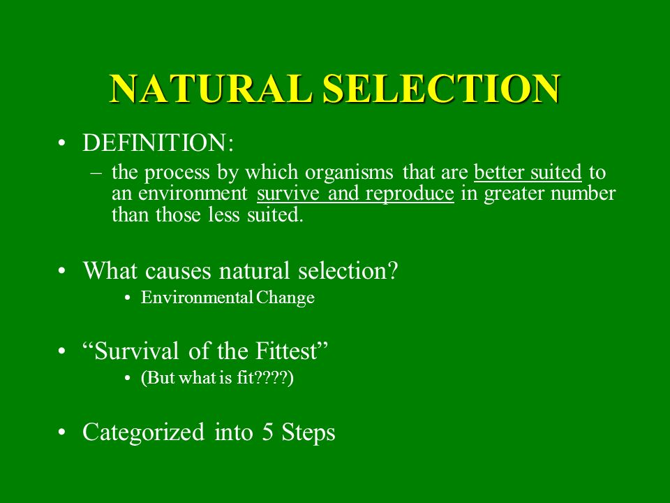 Darwin S Theory Of Natural Selection Defintion
