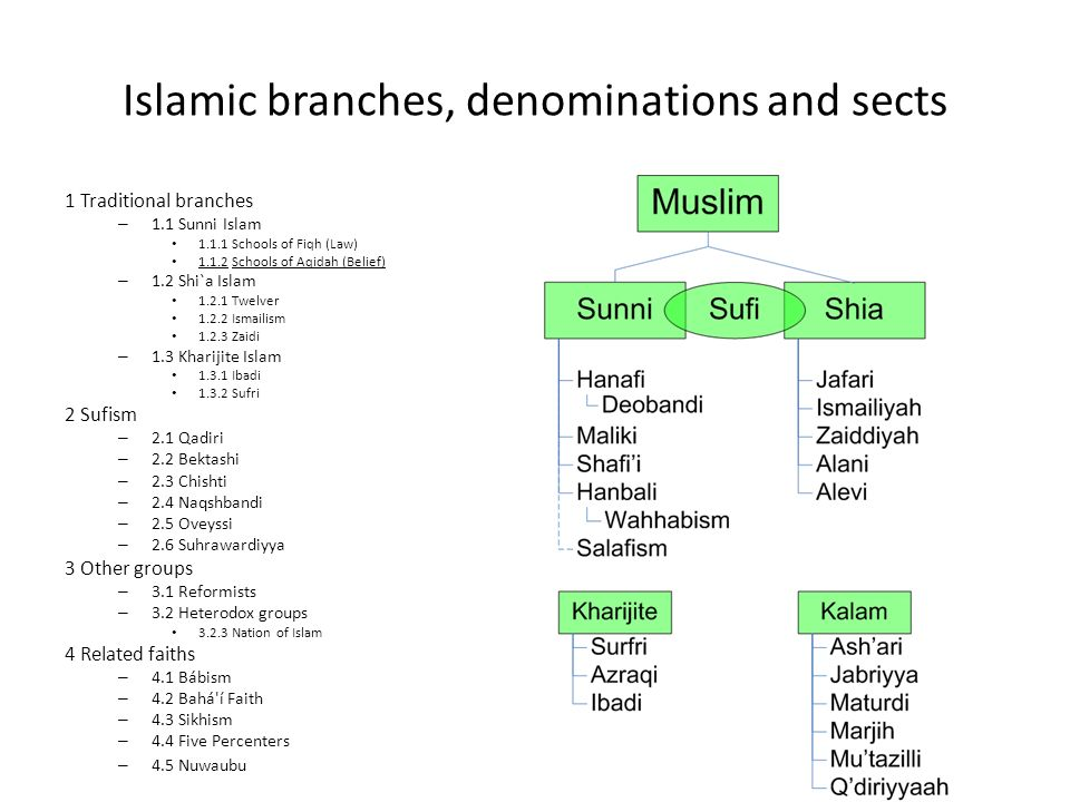 islam and shi ite branches The division has its roots in a rift between the sunni and shia disciplines of islam that opened 1,400 years ago.